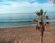 what-to-do-in-marbella
